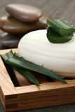 Aloe vera soap Stock Image