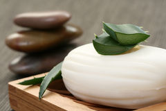 Aloe vera soap Stock Images