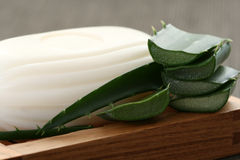 Aloe vera soap Royalty Free Stock Photography