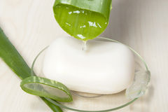 Aloe Vera soap Stock Photos