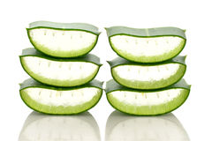 Aloe vera Sort nested Royalty Free Stock Photo