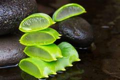 Aloe vera spa Royalty Free Stock Image