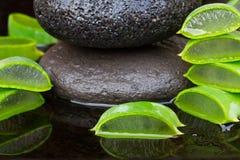 Aloe vera spa Royalty Free Stock Photos