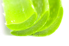 Aloe vera stack Stock Images