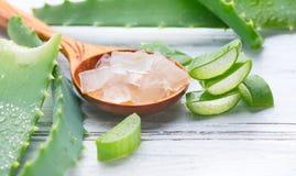 Aloe Vera stelnar closeupen Skivade Aloevera naturliga organiska förnyandeskönhetsmedel, alternativ medicin Organiskt skincarebeg royaltyfria foton