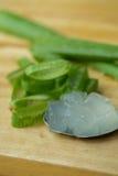 Aloe Vera stelnar nästan bruk i matmedicin och skönhetbransch S Royaltyfria Foton