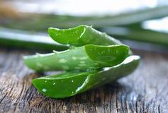 Aloe vera su di legno Fotografie Stock Libere da Diritti