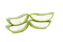 Aloe vera su priorità bassa bianca Immagine Stock
