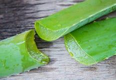 Aloe vera su struttura di legno Fotografia Stock Libera da Diritti