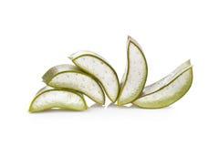 Aloe vera su una priorità bassa bianca Fotografia Stock Libera da Diritti