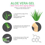 Aloe Vera gel. Skin tonic anti aging effects. Aloe vera is a succulent plant species of the genus Aloe. It grows wild in tropical climates around the world and Royalty Free Stock Photos