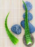 Aloe vera sugli ingredienti naturali delle stazioni termali di scena di trattamento della stazione termale delle pietre Immagine Stock