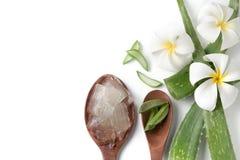 Aloe vera sul cucchiaio di legno Fotografia Stock