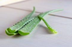 Aloe vera sul fondo del bordo di legno Fotografia Stock Libera da Diritti