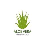 Aloe vera Stock Photos