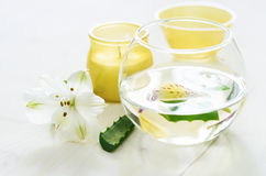 Aloe vera water with slices. Spa concept. Royalty Free Stock Photo