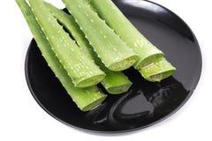 Aloe verde su fondo bianco Fotografia Stock Libera da Diritti