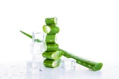Aloe verde Vera e cubetti di ghiaccio su bianco Fotografia Stock