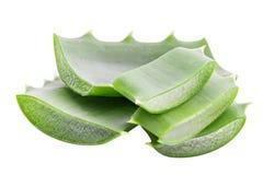 Aloe verde vera isolata su fondo bianco con il percorso di ritaglio Immagine Stock