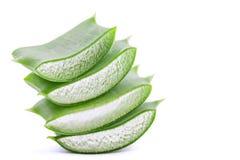 Aloe verde vera isolata su fondo bianco con il percorso di ritaglio Immagine Stock Libera da Diritti