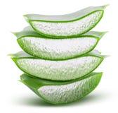 Aloe verde vera su fondo bianco con il percorso di ritaglio Fotografia Stock Libera da Diritti