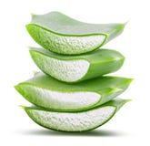Aloe verde vera su fondo bianco con il percorso di ritaglio Immagini Stock