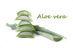 Aloes Vera Obrazy Stock