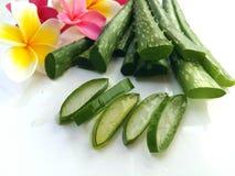 Aloes Vera w ten sposób świeży dla zdroju i piękna na białym tle Zdjęcia Stock