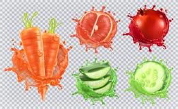 Aloesaft, -karotten, -pampelmuse, -granatapfel und -gurke Drei Farbikonen auf Pappumbauten vektor abbildung