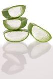 Aloesu Vera zieleni świezi liście pokrajać odosobnionego nadmiernego białego backgroun Obrazy Stock