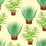 Aloeträd och aloe vera i krukor på en grön bakgrund seamless modell Passande för tapet och som en bakgrund för gåva stock illustrationer