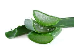Aloevera-Blatt solated auf Weiß Stockfotos