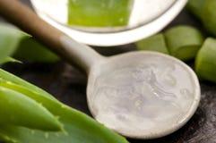 Aloevera fruktsaft med nya leaves Royaltyfri Bild