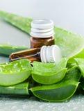 Aloevera - ingredienti naturali delle stazioni termali Fotografia Stock