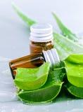 Aloevera - ingredienti naturali delle stazioni termali Immagine Stock