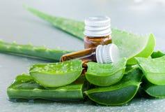 Aloevera - ingredienti naturali delle stazioni termali Fotografie Stock Libere da Diritti