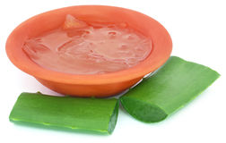 Aloevera medicinale Fotografie Stock