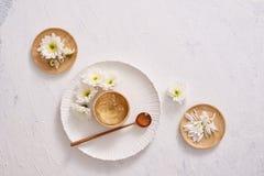 Aloevera medicinale sopra fondo bianco Fotografia Stock