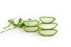 AloeVera mycket användbar växt- medicin för hudbehandling och oss Arkivfoton