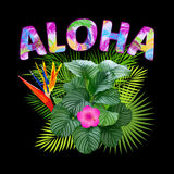 aloha Χαβάη Σχέδιο μπλουζών Aloha Στοκ φωτογραφία με δικαίωμα ελεύθερης χρήσης