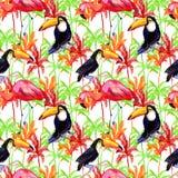 aloha картина Гавайских островов безшовная самана коррекций высокая картины photoshop качества развертки акварель очень иллюстрация штока