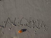 Aloha Zdjęcie Stock