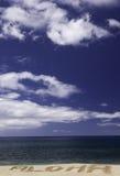 Aloha ad una spiaggia hawaiana Immagini Stock