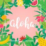 Aloha begrepp Utdragen bokstäver för hand på rosa bakgrund Tropiska sidor, frukter och blommor för affischen, baner, reklamblad royaltyfria bilder