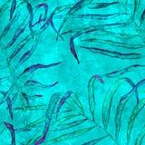 Aloha configuration sans joint hawa?enne Paume de balancement d'aquarelle illustration stock