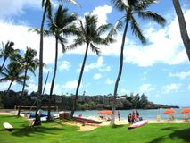 Aloha dalle Hawai!! Fotografia Stock Libera da Diritti