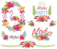 Aloha Floral Flamingo vector illustratie