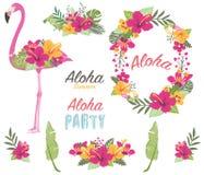 Aloha Flower Flamingo Collections lizenzfreie abbildung