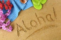 Aloha fondo della spiaggia Immagine Stock