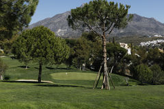 Aloha golf course in Marbella, Spain Royalty Free Stock Photography